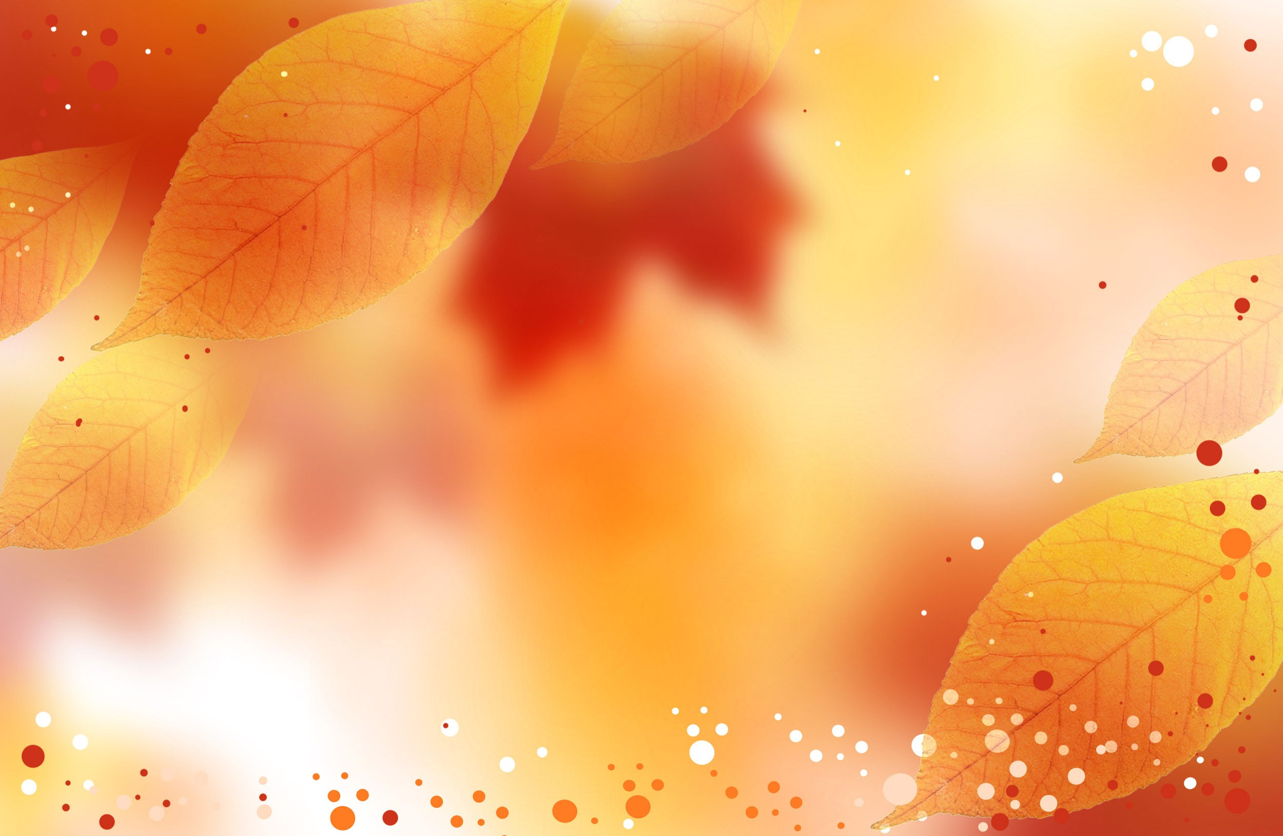 fall background free desktop 8 high definition wallpapers hd jpeg